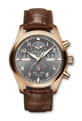 IWC Pilots Watches IW379105 Automatic Luxury Watches